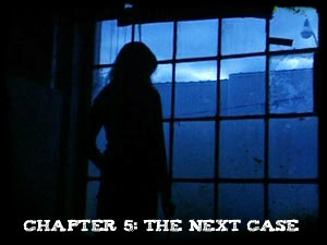 Chapter 5 - The Next Case
