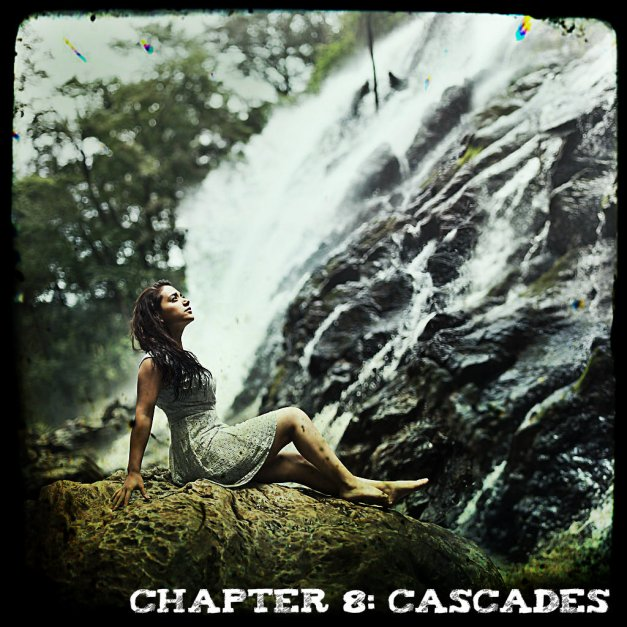 Chapter 8 - Cascades - Jorge Barreda