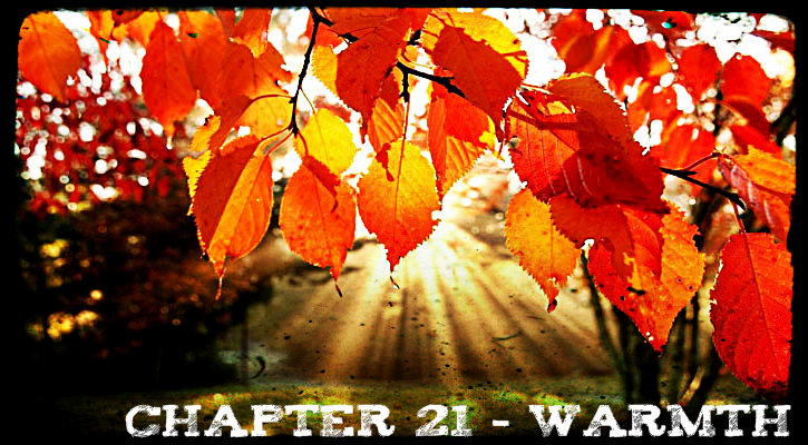 Chapter 21 - Warmth