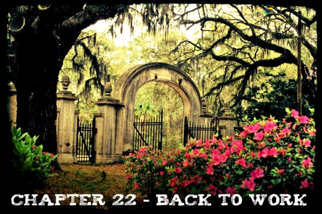 Chapter 22 - Back to Work