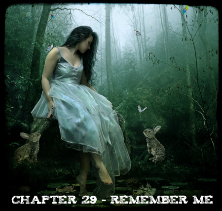 Chapter 29 - Remember Me